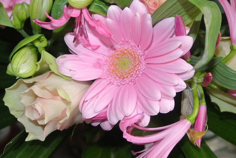 'RONNY & PASCAL' Bloemen voor Maintje 2012-11-11 10.JPG