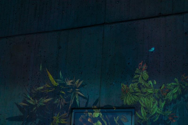 light city - butterfly garden(p).jpg