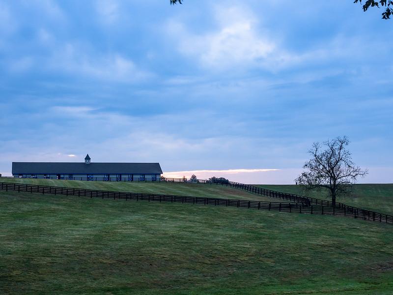 02 Oct 16 Horse farm  (1 of 1).jpg