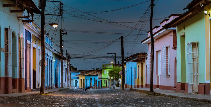 Cuba Dogs at Dawn