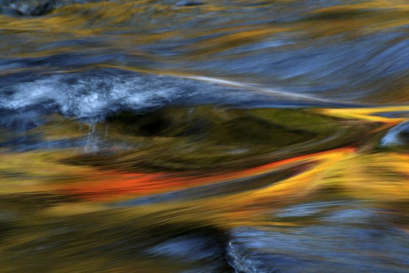 fawater-swirl_MG_7301.jpg
