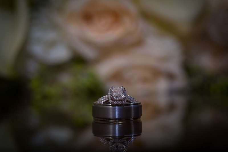 Meredith Wedding JPEGS 3K-873.jpg