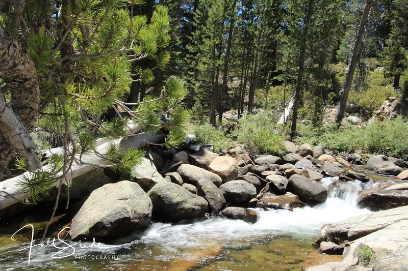 Yosemite 2018 -24.jpg