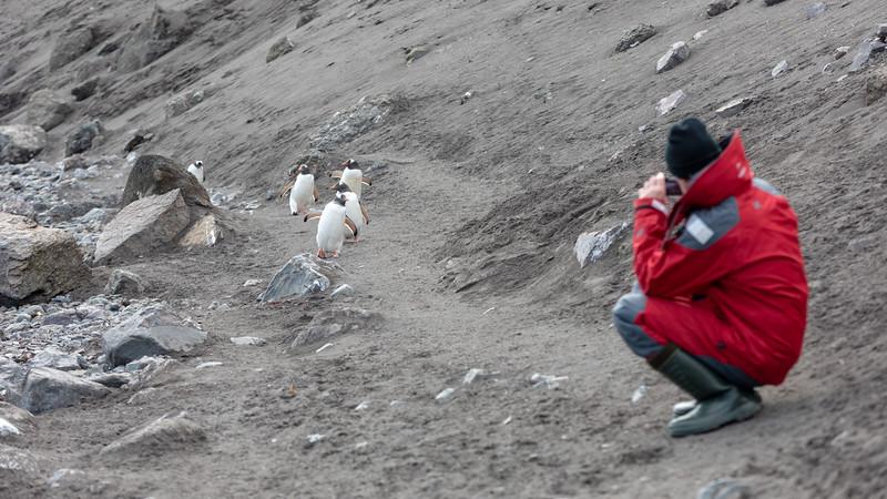 2019_01_Antarktis_01367.jpg
