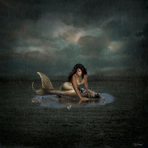 Photo Art Composites