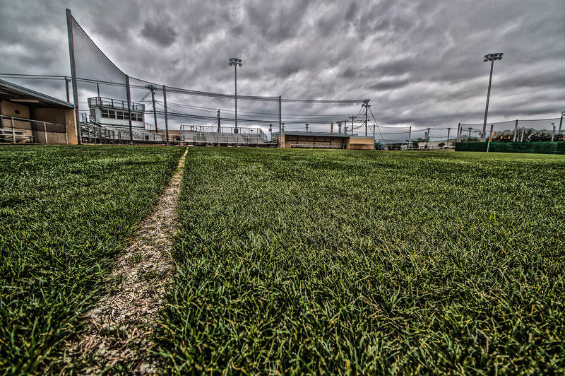 Judson Field-4.jpg