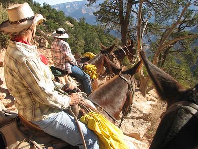 2009_09_07 - Grand Canyon Mule Trek 1