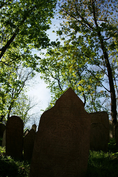 Old Jewish cemetery in Prague. Peaceful place.