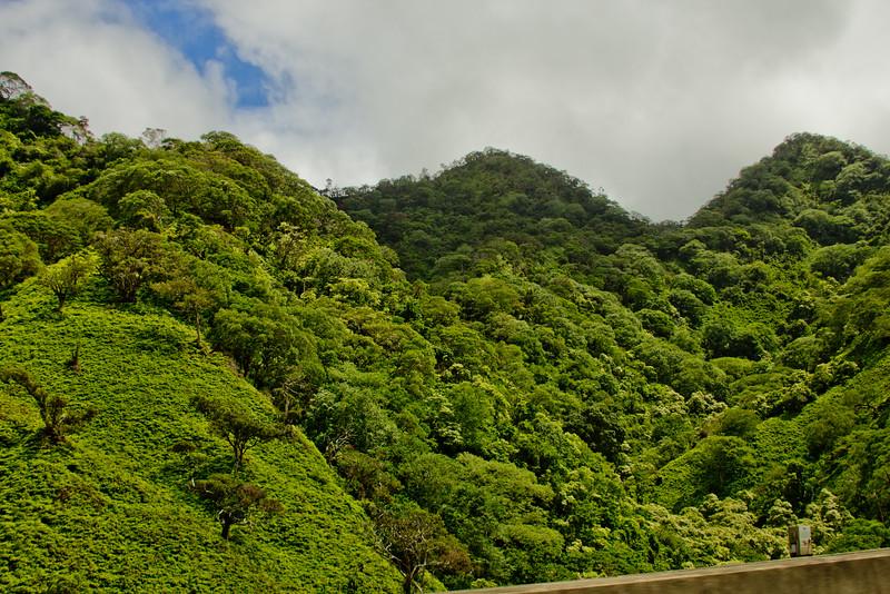 Journey into Oahu Photograph 33