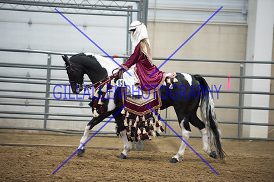 CDHS 150829 Fantasy Costume