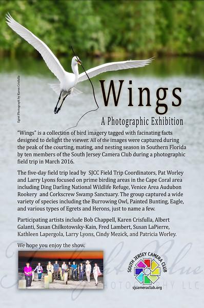 Wings Exhibit Information