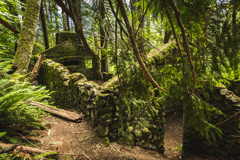 1 - The ruins of the Nellie Corser House being consumed by the forest near Skamania, Washington.