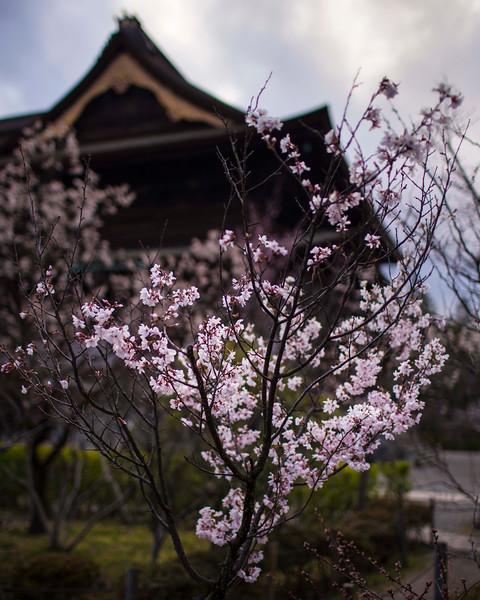 Nagano  12042013 008.jpg