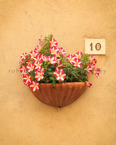 Flowerpot 10 , Pienza , Tuscany