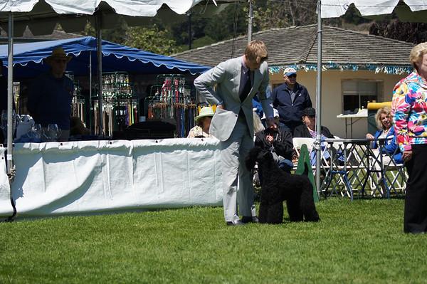 Del Monte Kennel Club July 2012