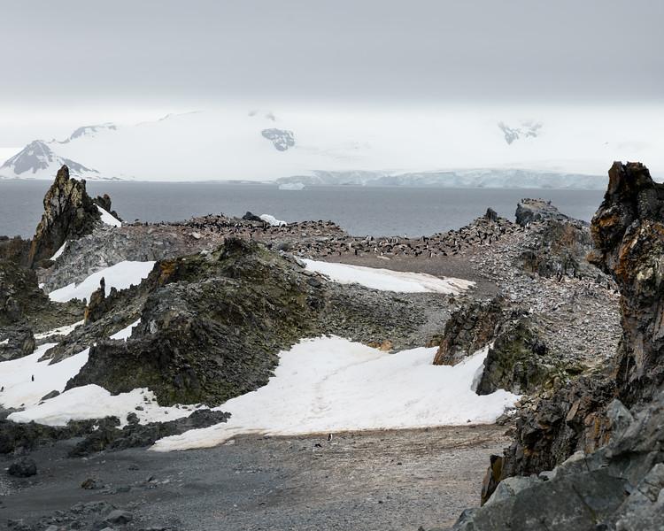Antarctica-1437.jpg