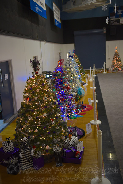 BGCA Celebration of Trees 2016