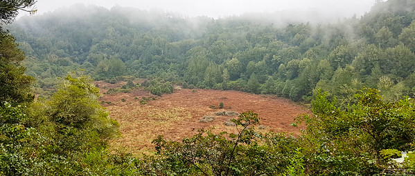 Rongomai Craters