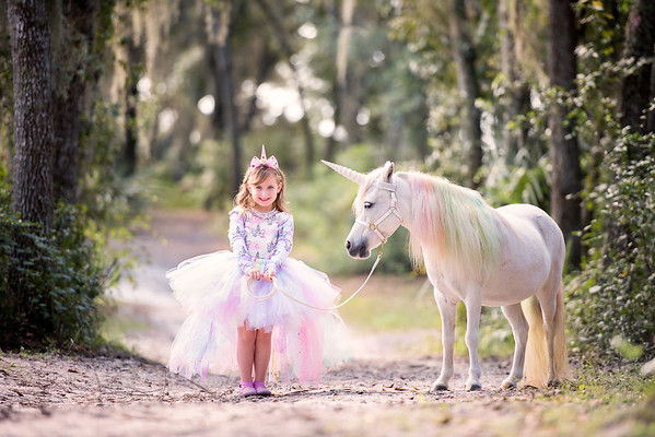 Brock Unicorn Oct 2019