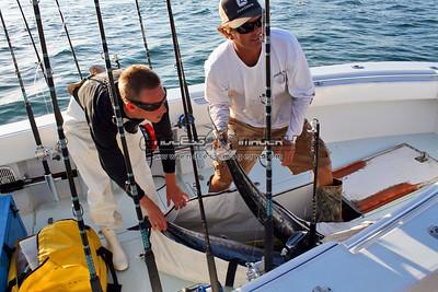 2011 Sailfish Challenge - Palm Beach Afternoon