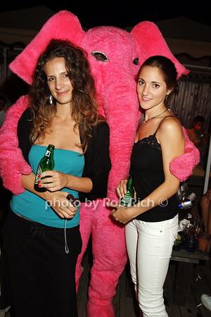 pink elephant photo by Rob Rich © 2008 516-676-3939 robwayne1@aol.com