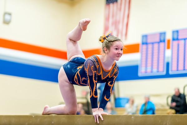 Gymnastics 2017-18