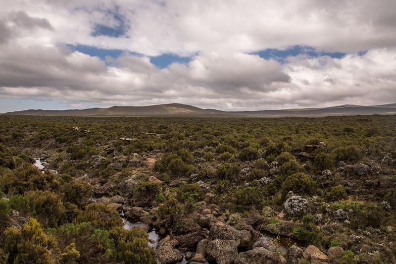 Kilimanjaro_Feb_2018-9.jpg