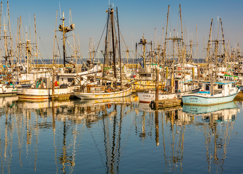 Westport, WA Fishing Fleet