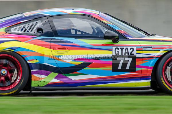 DS 77 Multicolor