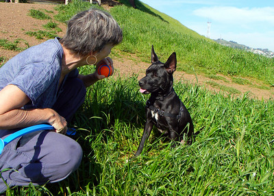 Bernal Heights with Cali the Dog and Dominica