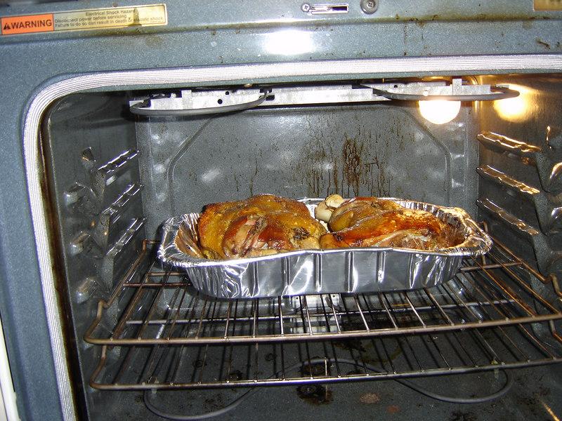 2006 11 23 - Thanksgiving in FL 19.JPG