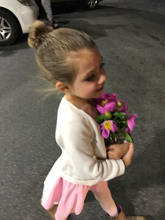 Ballet 2017 (Flowers)