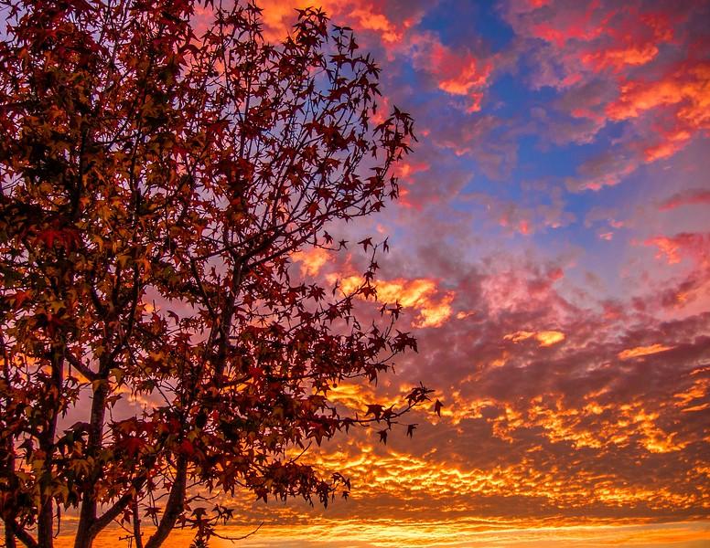 Sunrise_CDM-2.jpg