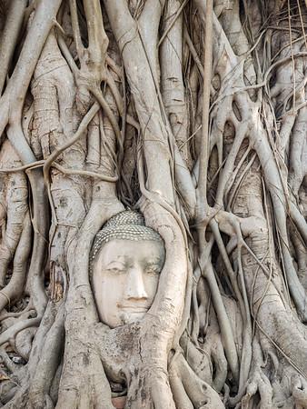 Ayuttaya Wat Maha That