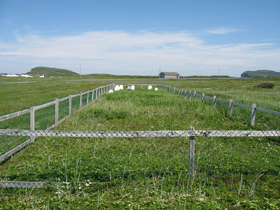 L'Anse aux Meadows Cemetery (Old)