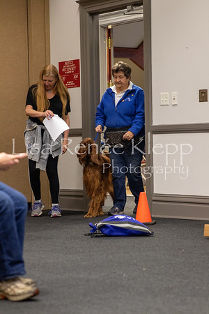 Burlington County Kennel Club Scent work January 2020