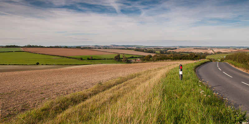 Dorset Downs landscape