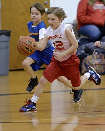 RYA Cards Basketball 1-31-2015
