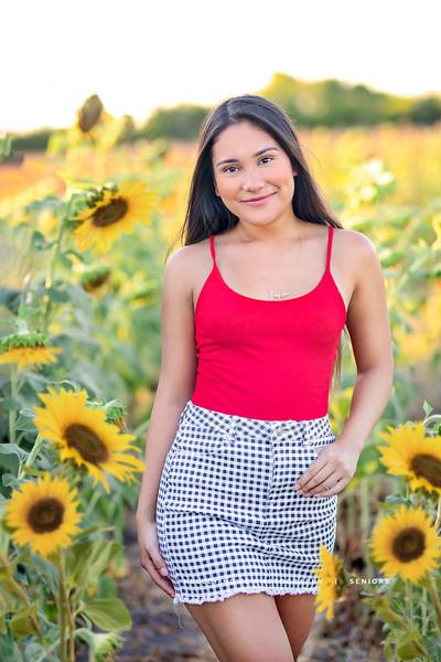 Sunflower 0402-Edit.jpg