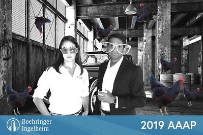 Boehringer Ingelheim Social @ 2019 AAAP Annual Meeting