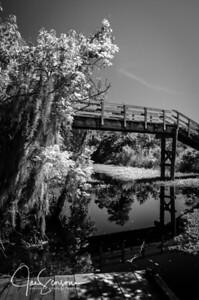 Jean Lafitte National Park - Barataria Preserve in B&W 04-20-2014