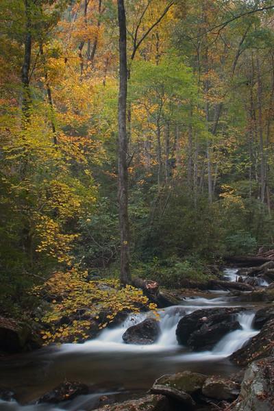 smith creek_5866.jpg