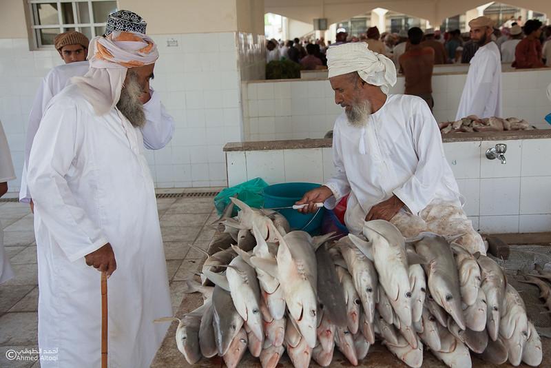 Fish market (8).jpg