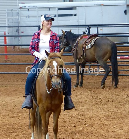 Cowboys and Horses - 2016