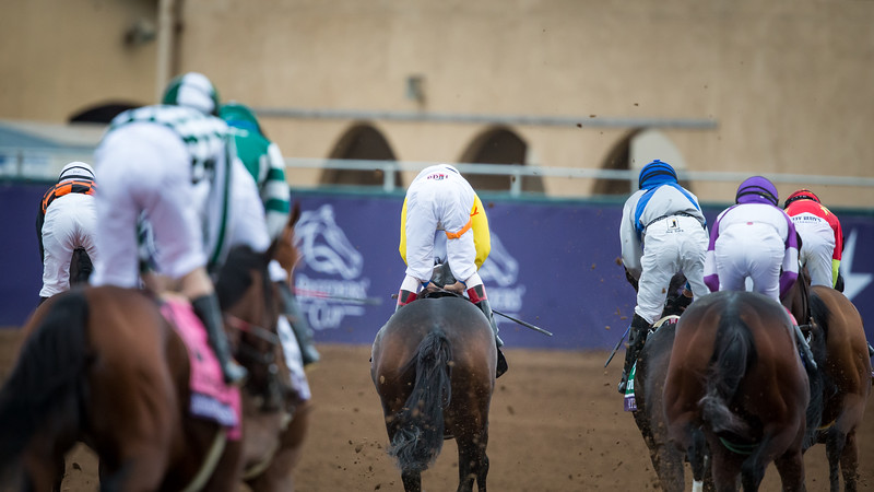 Forever Unbridled (Unbridled's Song) wins the BC Distaff at Del Mar on 11.3.2017. John Velazquez up, Dallas Stewart trainer, Charles Fipke owner.