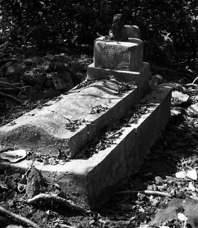 Tong Wo Tong Cemetery
