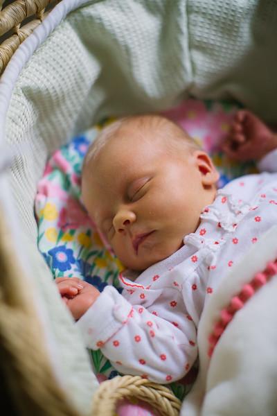 Clara Newborn Shoot