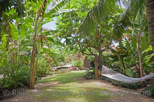 Rarotonga, Cook Islands, 2009