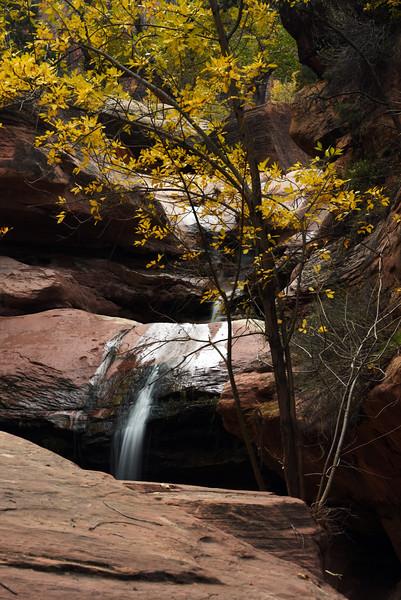 pine creek 9173.jpg