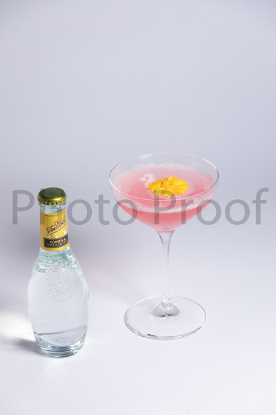 BIRDSONG Schweppes Cocktails 089.jpg
